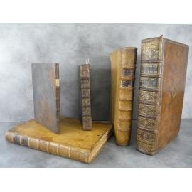 Manuscrit Chartes XIVe, Terriers des XVe, XVIIe et XVIIIe siècle Région Montrottier, Château Albigny, Lyon Saint Etienne Feurs