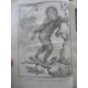 Buffon Histoire naturelle 1749- 1804 44 vol in quarto en reliure uniforme plein veau 1269 planches