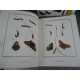 Geant Folio Les insectes Rosêl von Rosenhof, Citadelles Mazenod Sous emboitage Cadeau ouvrage de référence