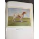 Docteur Heuillet Vétérinaire Tous les chiens Illustrations de Lagarrigue Fleuve 1967