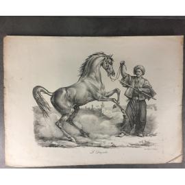 Carle Vernet Grande Lithographie Originale Cheval Horse Le Derviche Delpech
