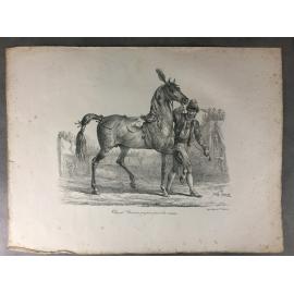 Carle Vernet Grande Lithographie Originale Cheval Horse Cheval romain préparé pour la course Delpech