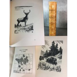 Delacour Alfred Gibier de France Edition originale numeroté de 1929 Bois de Hallo,...Chasse Cynégétique