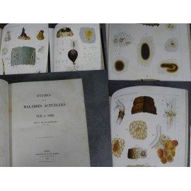 Quatrefages Maladies du ver a soie + nouvelles recherches 1859-1860 très rares éditions originale
