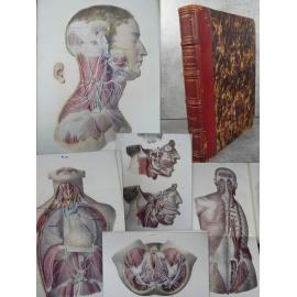 Important Atlas Médecine Hirschfeld Lévéillé Traité d'ichonogaphie du système nerveux Neurologie sens yeux anatomie XIXe